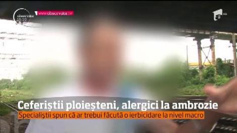 Zeci de angajaţi ai Gării de Sud din Ploieşti suferă an de an din cauza ambroziei!
