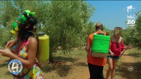 """Gina Pistol și Margherita de la Clejani, distrugătoarele de insecte! """"Ziceai că eram posedată..."""""""