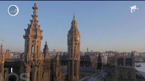 Parlamentul britanic, invadat de șoareci