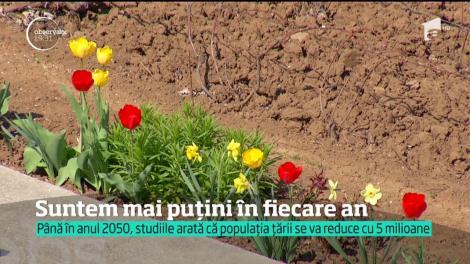 Suntem mai puţini, cu fiecare an. Până în 2050 populaţia României va scădea cu aproape cinci milioane