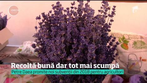 În România se face şi acum agricultură ca în evul mediu. Culturile ţăranilor sunt la mila vremii, iar noi simţit asta de câte ori mergem la piaţă