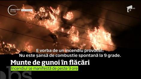 Incendiu de proporţii la groapa de gunoi a oraşului Cluj-Napoca!