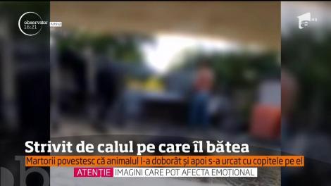 VIDEO / Scene terifiante! Un bărbat de 50 de ani, călcat în picioare de propriul cal, la scurt timp după ce îl bătuse minute în șir. Martorii au privit îngroziți răzbunarea animalului