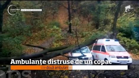 În Braşov, două ambulanţe au fost distruse de un copac, pus la pământ de vântul puternic
