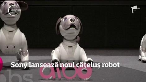 Sony a lansat o nouă versiune a căţeluşului robot Aibo