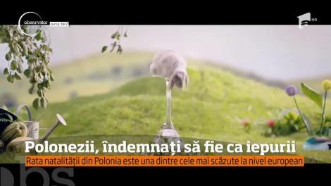 Campanie inedită a guvernului polonez!