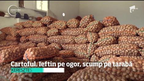 Avem cea mai mare producţie de cartofi de după Revoluţie şi cei mai săraci producători
