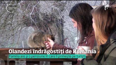 A dat traiul din Olanda, pe liniştea din România. De doi ani, locuieşte într-un sat din Apuseni