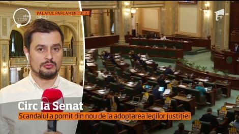 Este circ la Senat. Adoptarea legilor justiţiei a generat un scandal la şedinţa condusă de Călin Popescu Tăriceanu