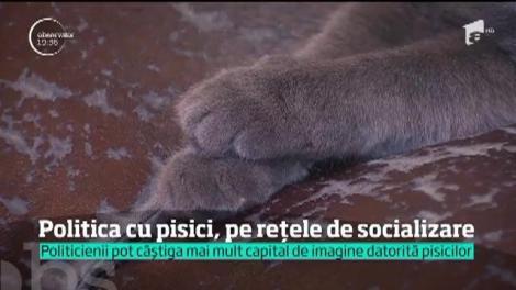 Politicienii care și-au luat animale de companie şi au umplut paginile de socializare cu poze