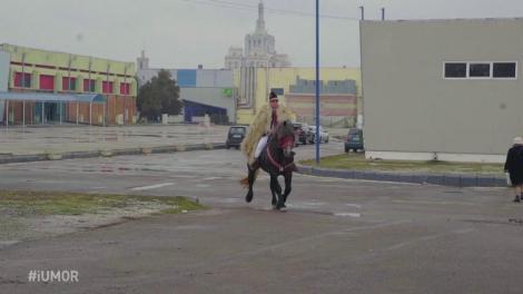 """Daniel Andruș a venit călare pe cal tocmai din Ardeal, cu multe daruri pentru jurați. Cheloo: """"Cadourile au fost sub orice critică. A venit cu poșircă. Mă simt disprețuit"""""""
