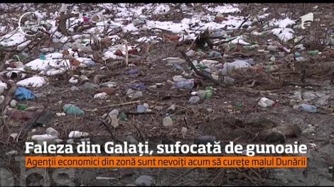 Dunărea creşte, gunoaiele vin! În urma topirii zăpezii, tone de deşeuri au apărut pe faleza din Galaţi