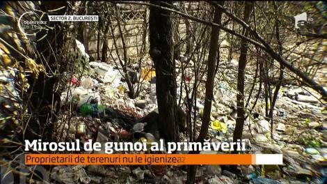 Mirosul de gunoi al primăverii a cuprins Capitala