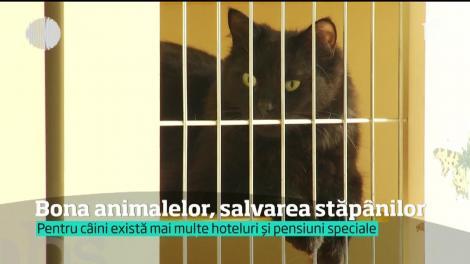 Bona animalelor, salvarea stăpânilor