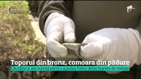 Toporul din bronz, comoara din pădure