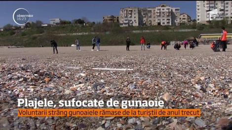 Vine 1 MAI, dar marea e departe de o destinație de vis! Plajele de pe litoralul românesc, sufocate de gunoaie. VIDEO REVOLTĂTOR!