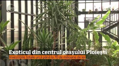 Investițiile totale din parcul orașului Ploiești se ridică la 70 de milioane de lei