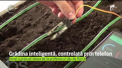 Un elev de la un liceu din Bistriţa a creat o grădină inteligentă ce poate fi controlată şi monitorizată pe Internet