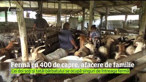 Fermă cu 400 de capre, afacere de familie. Cei doi soți și tatăl bărbatului se ocupă singuri de întreaga fermă