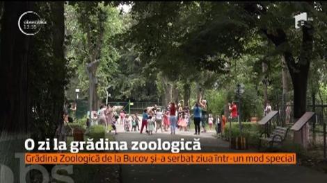 Sute de oameni au luat cu grădina zoologică de lângă Ploieşti