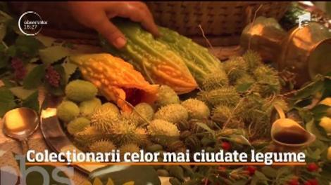 Doi soţi din judeţul Satu Mare au reuşit să obţină o recoltă minunată de legume exotice