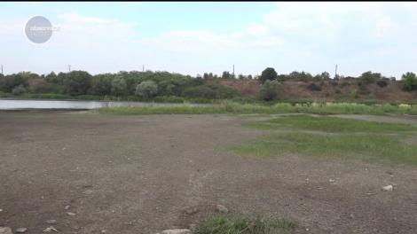 Apa din lacul Şăuleşti, județul Hunedoara, a dispărut cu totul. Balta s-a transformat într-un adevărat deşert