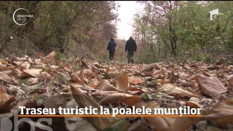 Traseu turistic pentru pasionaţii de natură, în munţii Poiana Ruscă