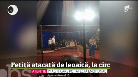 Scene de groază surprinse în timpul unui spectacol de circ din Rusia