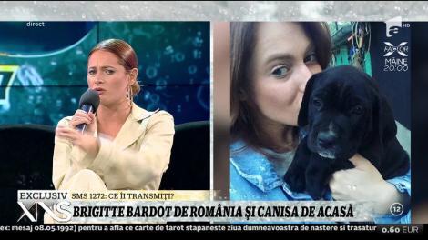 Brigitte Bardot de România! Raluka a ajuns să strângă 12 câini!