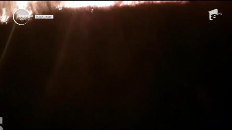 Incendiu de vegetaţie foarte aproape de Autostrada Bucureşti-Piteşti