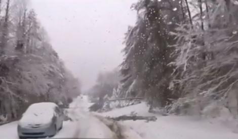Imagini apocaliptice! Locul unde într-o singură zi a nins cât într-un an întreg
