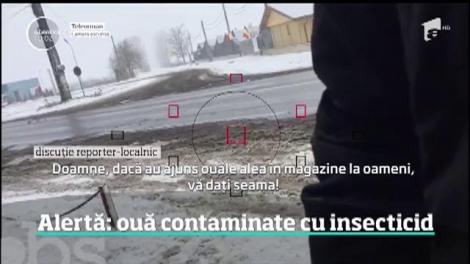E alertă în România, după ce o sută de mii de ouă posibil contaminate cu insecticid au ajuns pe mesele românilor