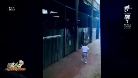 Smiley News. O fetiță pupă toți caii de la o herghelie
