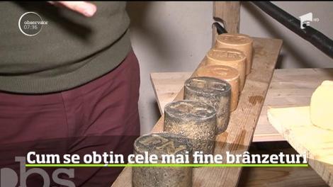 Cum se obțin cele mai fine brânzeturi