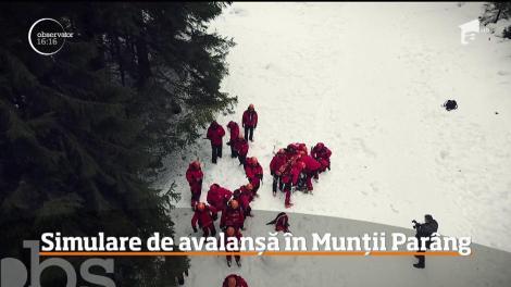 Simulare de avalanșă în Munții Parâng