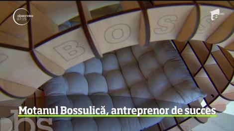 Motanul Bossulică, antreprenor de succes