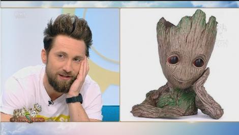 """Freza lui Dani Oțil, motiv de glume: """"Ăsta este un copac. Are capul de lemn. Nu vă este rușine?!"""""""