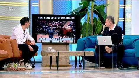 Smiley News. Un cal a fost vândut cu 9.5 milioane de dolari