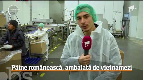 Vietnamezii au ajuns să ambaleze pâinea românească