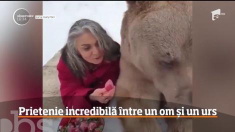 Neînfricată lângă un urs grizzly uriaş! O femeie a uimit întreaga lume. Imagini incredibile! - Video