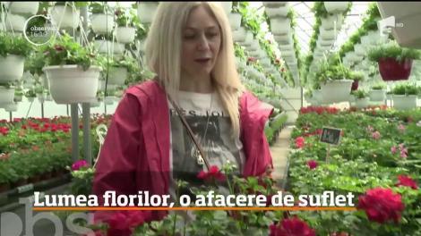 Lumea florilor, o afacere de suflet