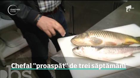 """Inspectorii de la Protecţia Consumatorilor au găsit peşte """"proaspăt"""" de trei săptămâni"""