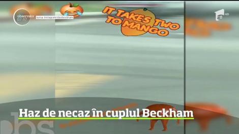 Distracţia în cuplu e încă la ea acasă în familia Beckham