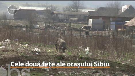 O altă faţă a Sibiului! Străzi neasfaltate, barăci fără curent electric şi munţi de gunoaie din cartierele mărginaşe