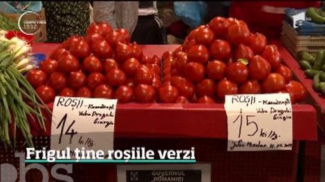 Vremea capricioasă face ravagii în țară! Românii care cultivă roșii riscă să piardă subvenția de 3000 de euro