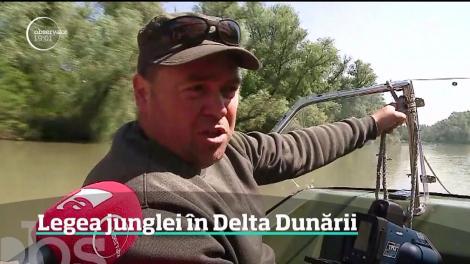 Imagini șocante cu atacul din Delta Dunării. O persoană a ajuns la spital