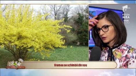 Vremea se schimbă din nou. Gabriela Băncilă, meteorolog ANM: Ploile vor continua până spre sfârșitul săptămânii