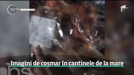 Inspectorii OPC din Constanţa au găsit imagini de coşmar în bucătăriile unor localuri din porturile Constanţa şi Agigea