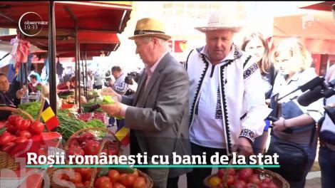 Primele roşii româneşti, dulci şi aromate, au ajuns în pieţe