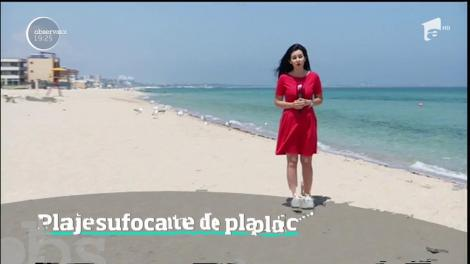 Plajele din Eforie sunt cele mai murdare de pe litoral, urmate de cele din Mamaia şi Năvodari